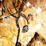 bison-prehist2-niaux